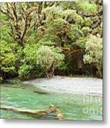 River In Rainforest Wilderness Of Fiordland Np Nz Metal Print