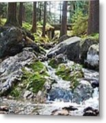 A River Scene In Wicklow, Ireland Metal Print