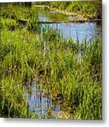 River Kennet Marshes Metal Print