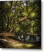 River Oak Metal Print by Marvin Spates