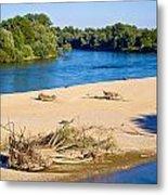 River Of Drava Green Nature Metal Print