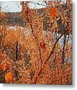 River Side Foliage Autumn Metal Print