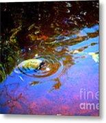 River Turtle Metal Print