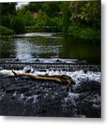 River Wye - In Peak District - England Metal Print