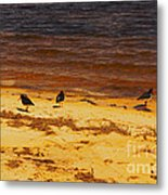 Riverbank Birds Metal Print