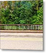 Road And Lush Green Forest Metal Print