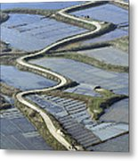 Road In Saltmarshes, Guérande Metal Print