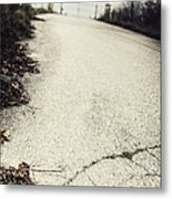 Road Less Traveled Metal Print