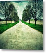 Road Lined By Trees Metal Print