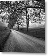 Road Not Traveled Metal Print
