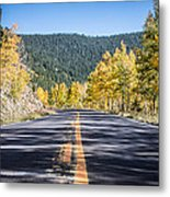 Road Of Color Metal Print