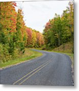 Road Passing Through A Forest, Alger Metal Print