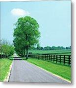 Road Passing Through Horse Farms Metal Print