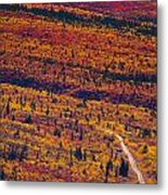 Road Through Fall Colored Tundra Metal Print