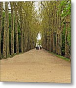Road To Chenonceau Metal Print