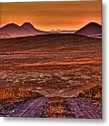 Road To Edna Valley Metal Print