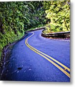 Road To Hana Metal Print