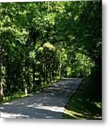 Road To Nature Metal Print
