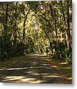 Road To The Enchanted Forest Metal Print