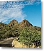 Road To The Two Humped Camel Metal Print