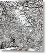 Road To Winter Metal Print