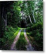Road Trip- Back Country Road Metal Print