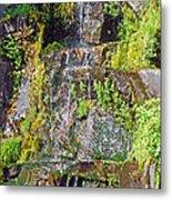 Roadside Waterfall. Mount Rainier National Park Metal Print