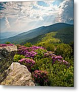 Roan Mountain From Appalachian Trail Near Jane's Bald Metal Print