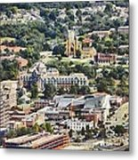 Roanoke Virginia Metal Print