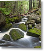 Roaring Brook Metal Print by Patrick Downey