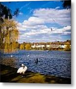 Roath Park Lake Metal Print