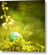 Robin's Egg On Moss Metal Print