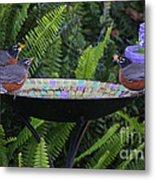 Robins In Bird Bath Metal Print