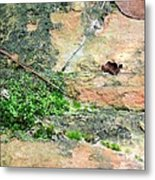 Rock Abstract 1 Metal Print
