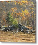 Rock Pile In Maine Blueberry Field Metal Print by Keith Webber Jr