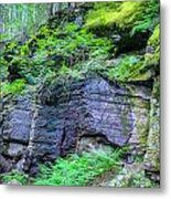 Rock Wall Trail Of The Cedars Glacier National Park Painted Metal Print