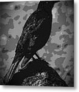 Rockbird Metal Print