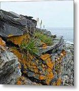 Rockbound Coast Metal Print