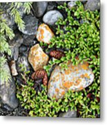 Rocks And Lichen Metal Print