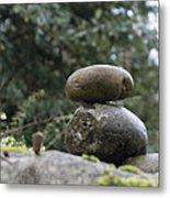 Rocks In The Garden Metal Print