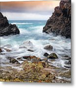Rocky Forster 010 Metal Print