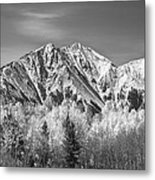 Rocky Mountain Autumn High In Black And White Metal Print