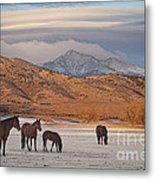 Rocky Mountain Country Morning Metal Print