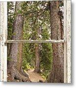 Rocky Mountain Forest Window View Metal Print