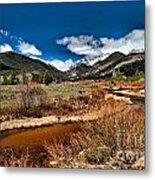 Rocky Mountain Meadows Metal Print