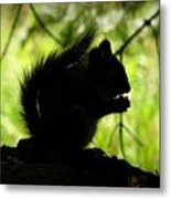 Rocky Mountain Squirrel Silhouette Metal Print
