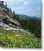 Rocky Mountain Summer Metal Print