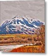 Rocky Mountains In Montana Metal Print