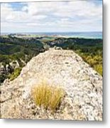 Rocky Outcrops Of Trotters Gorge Otago Nz Metal Print