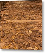 Rocky Road To The River In Savannah Metal Print